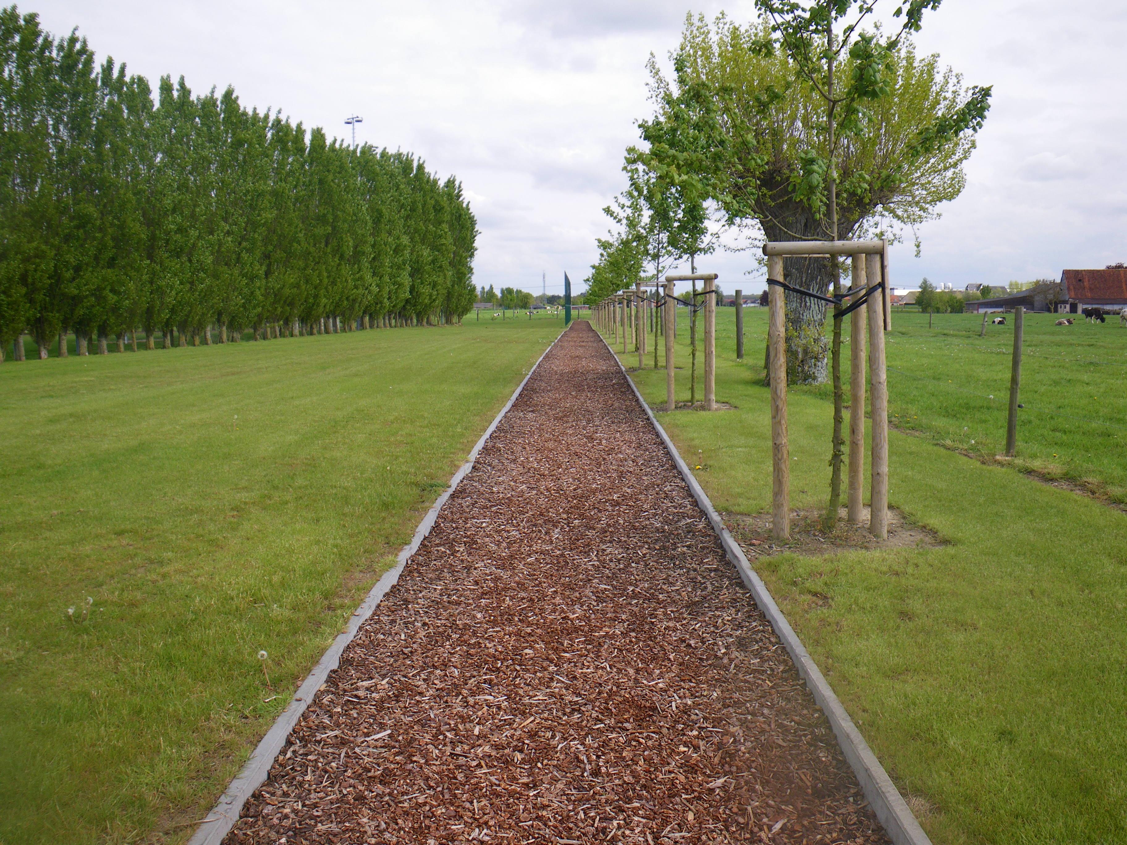 Tuinen en omgeving blokken op de home timo tuin for Vacature tuin